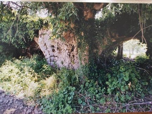 Aydın'ın gizli Şirince'si tarihi Naipli Köyü 1