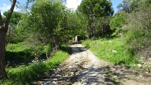 Aydın'ın gizli Şirince'si tarihi Naipli Köyü 4