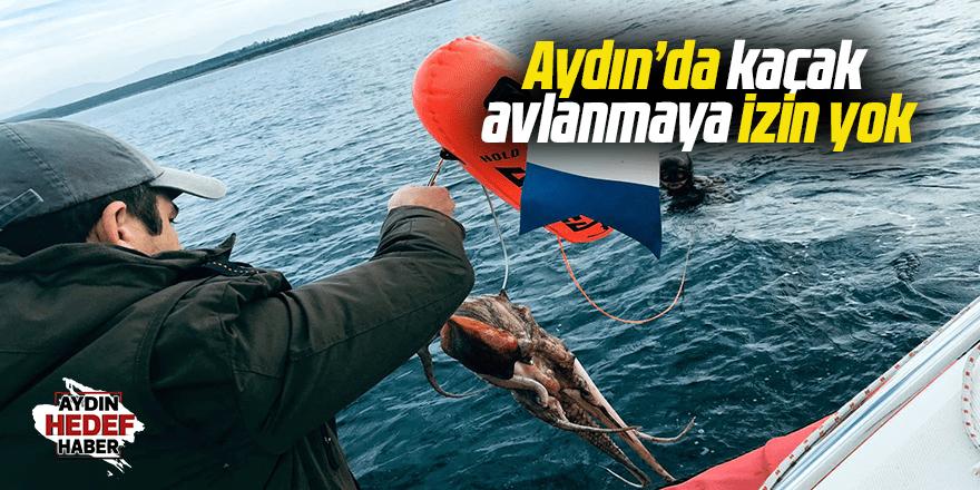 Aydın'da kaçak avlanmaya izin yok
