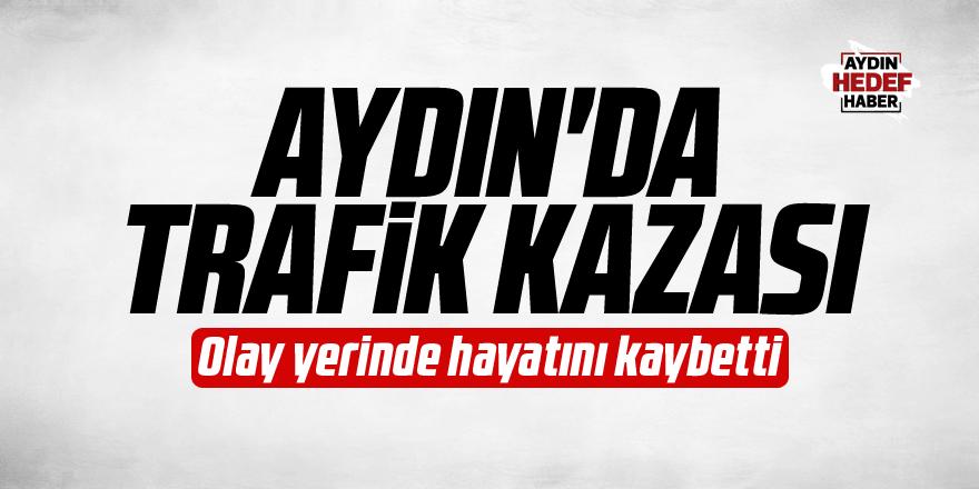 Aydın'da hafif ticari aracın çarptığı kadın öldü