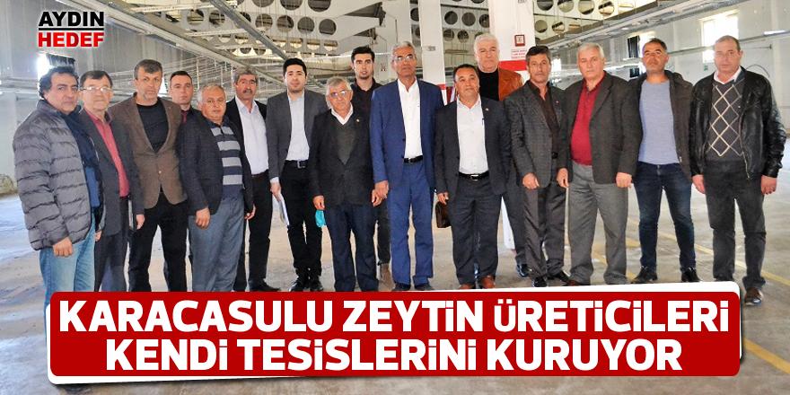 Karacasulu zeytin üreticileri kendi tesislerini kuruyor