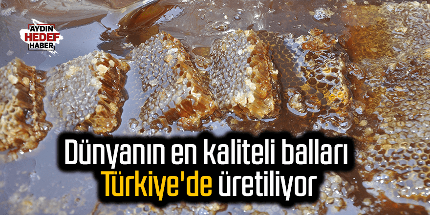 Dünyanın en kaliteli balları Türkiye'de üretiliyor