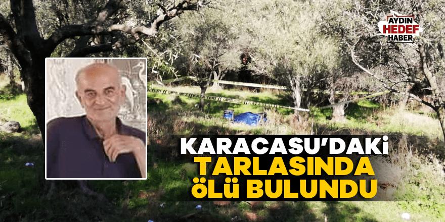 Karacasu'daki tarlasında ölü bulundu