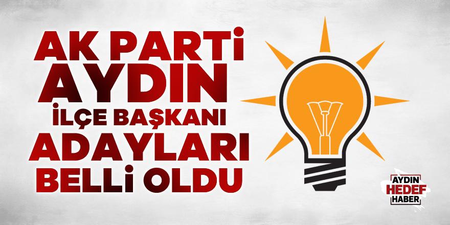 AK Parti ilçe başkanı adayları belli oldu