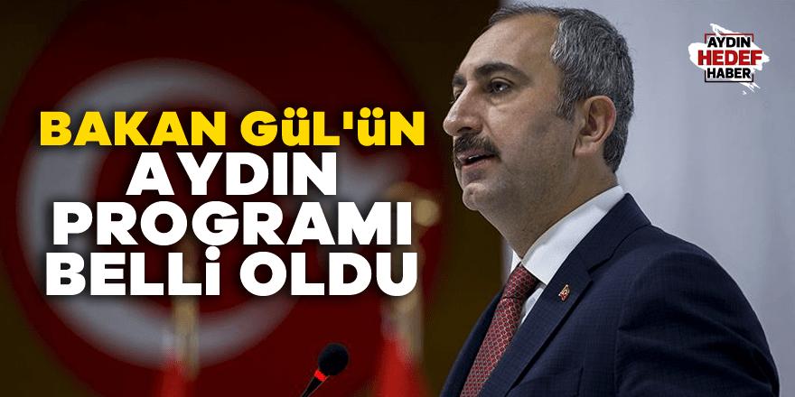 Bakan Gül'ün Aydın programı belli oldu