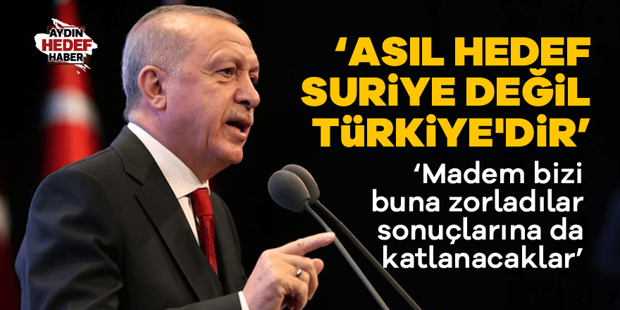 Cumhurbaşkanı Erdoğan: '' Kararlılığımızı görecekler''