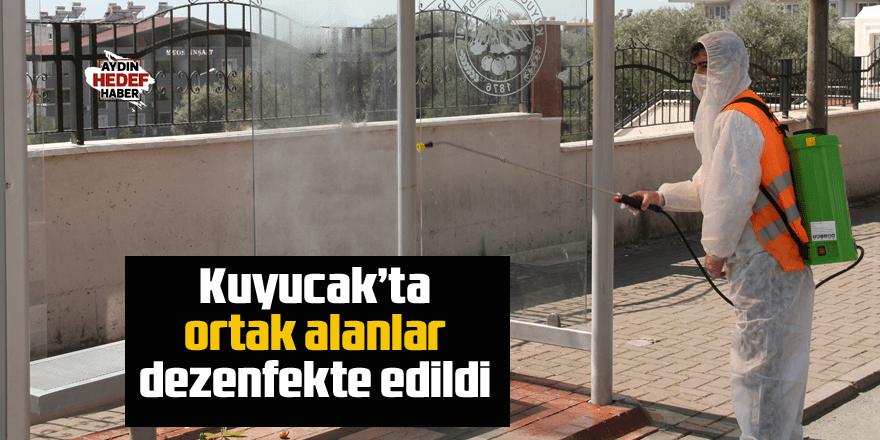 Kuyucak'ta ortak alanlar dezenfekte edildi