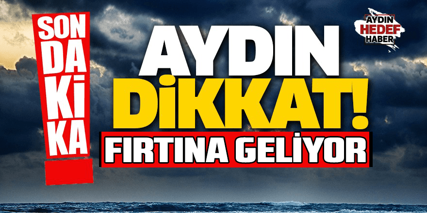 Aydın'da fırtına etkili oldu