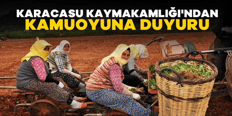 Karacasu'da tarlada bahçede çalışan üreticiye engel yok