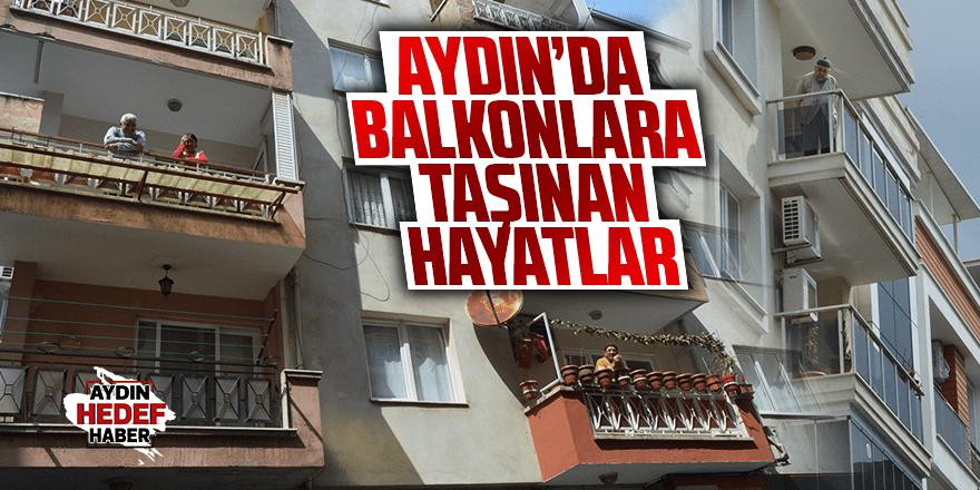 Aydın'da balkonlara taşınan hayatlar
