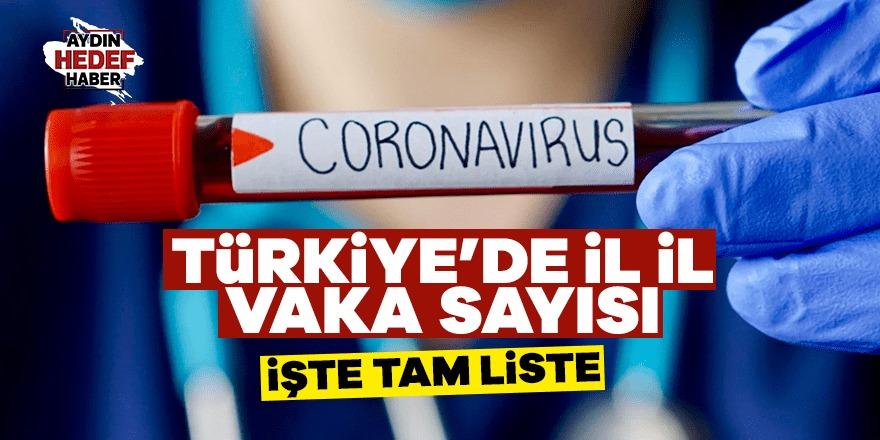 Türkiye'de il il vaka sayısı açıklandı