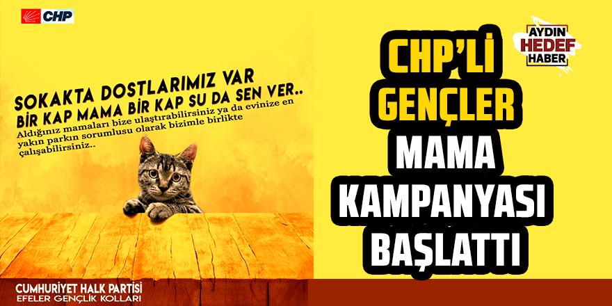 CHP'li gençler mama kampanyası başlattı