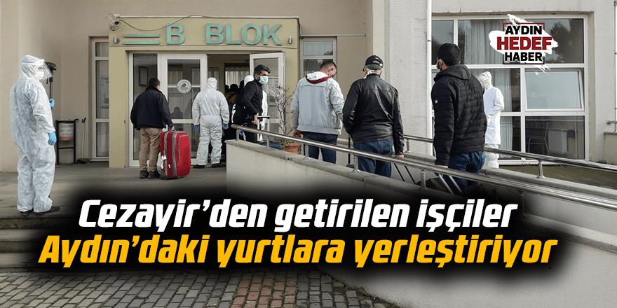 Cezayir'den getirilen işçiler Aydın'daki yurtlara yerleştiriyor