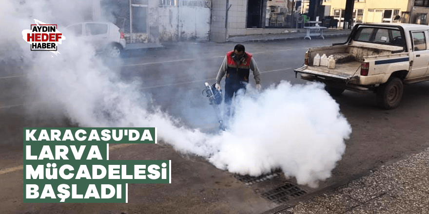 Karacasu'da larva mücadelesi başladı
