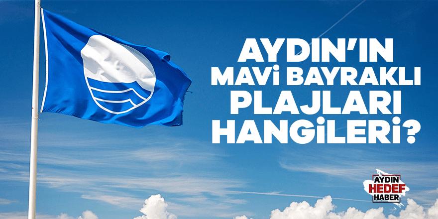 Aydın'da Mavi Bayraklı plajları hangileri
