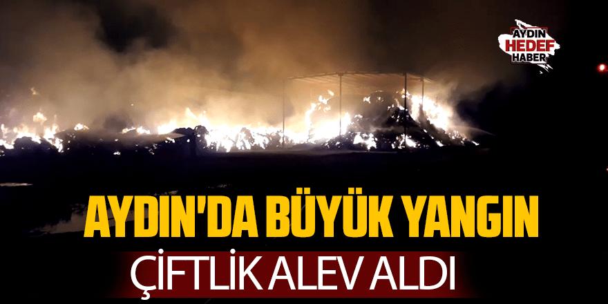 Aydın'da büyük yangın  Çiftlik alev aldı