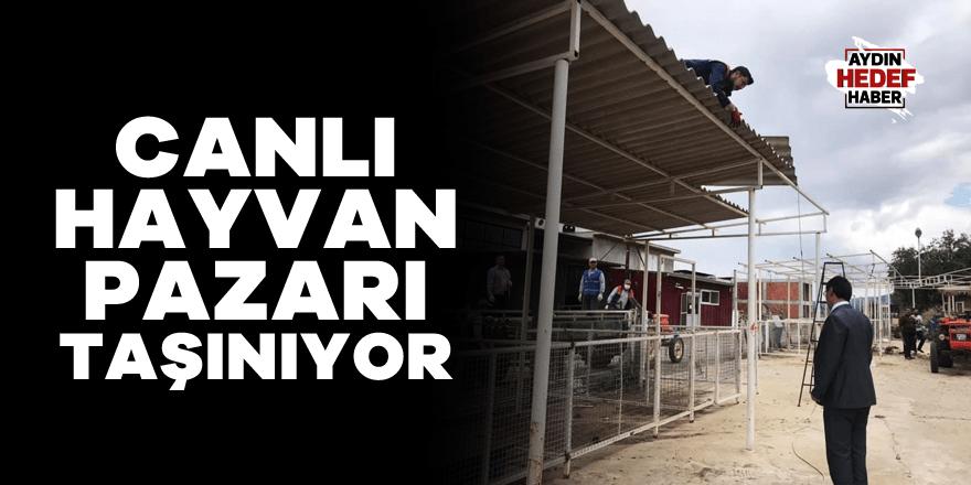 Karacasu'daki canlı hayvan pazarı taşınıyor