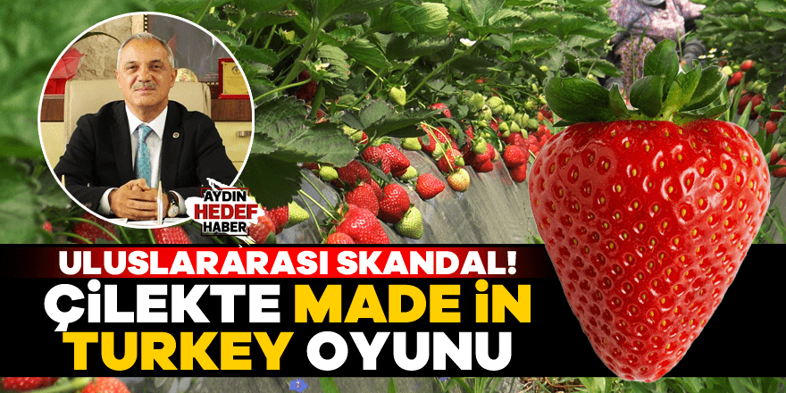 Çilekte Made in Turkey oyunu
