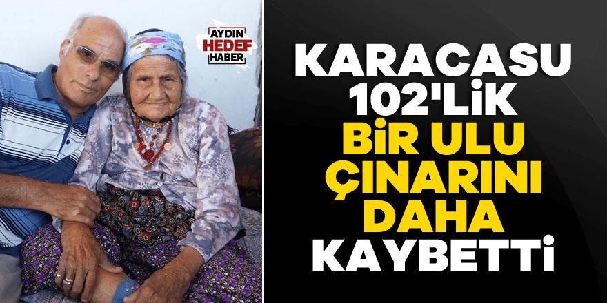 Karacasu 102'lik bir ulu çınarını daha kaybetti