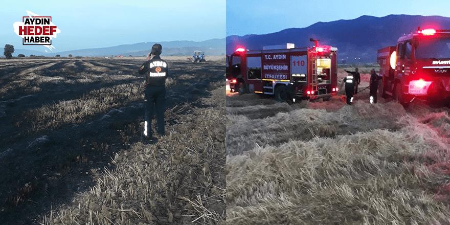 Kuyucak'taki arazi yangınında ekinler zarar gördü