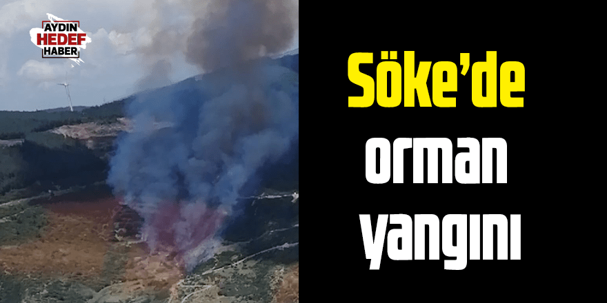 Söke'de orman yangını