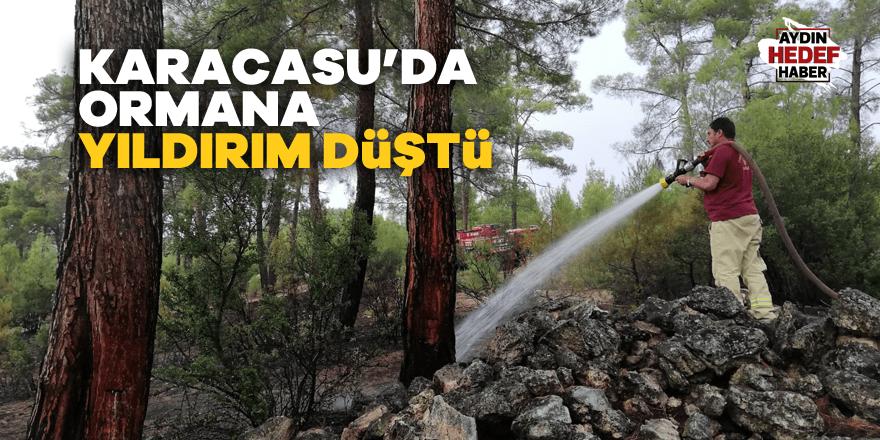 Karacasu'da ormana yıldırım düştü