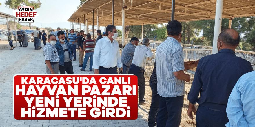 Karacasu'da canlı hayvan pazarı yeni yerinde hizmete girdi