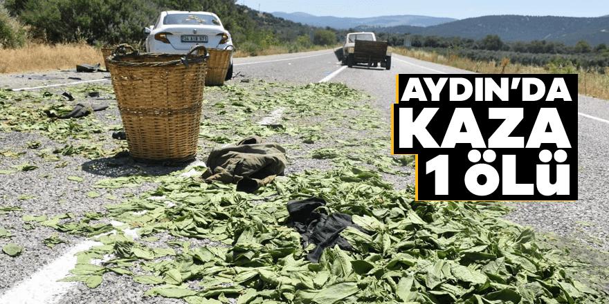 Aydın'da kaza: 1 ölü