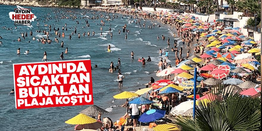 Aydın'da sıcaktan bunalan plaja koştu