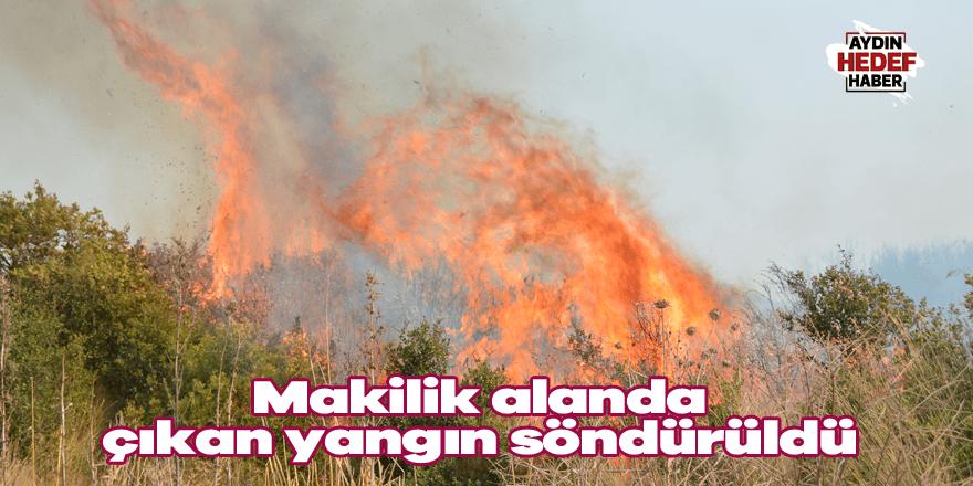 Makilik alanda çıkan yangın söndürüldü