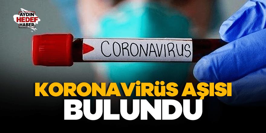 Rusya'dan son dakika koronavirüs aşısı açıklaması