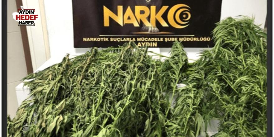 Aydın'da 74 uyuşturucu operasyonu yapıldı
