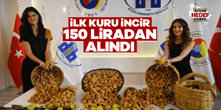 İlk kuru incir 150 liradan alındı