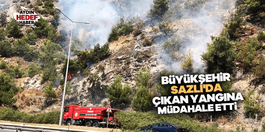 Büyükşehir Sazlı'da çıkan yangına müdahale etti
