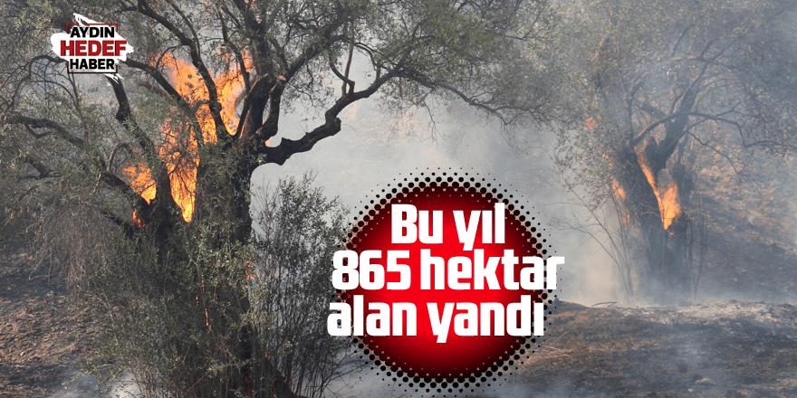 Bu yıl 865 hektar alan yandı