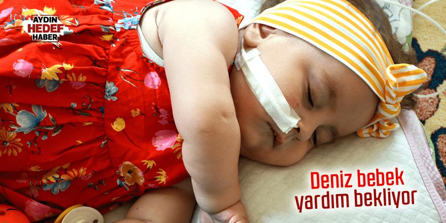 SMA hastası Deniz bebek yardım bekliyor