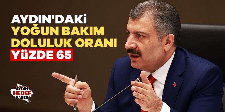 Aydın'daki yoğun bakım doluluk oranı yüzde 65