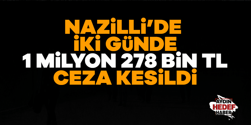 Nazilli'de iki günde 1 milyon 278 bin lira ceza kesildi