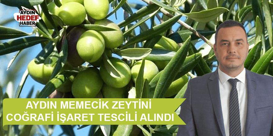 Aydın Memecik Zeytini coğrafi işaret tescilini aldı