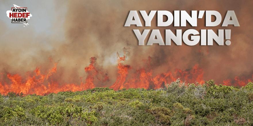 Makilik alandaki yangın söndürüldü