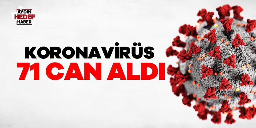 Koronavirüs 71 can aldı