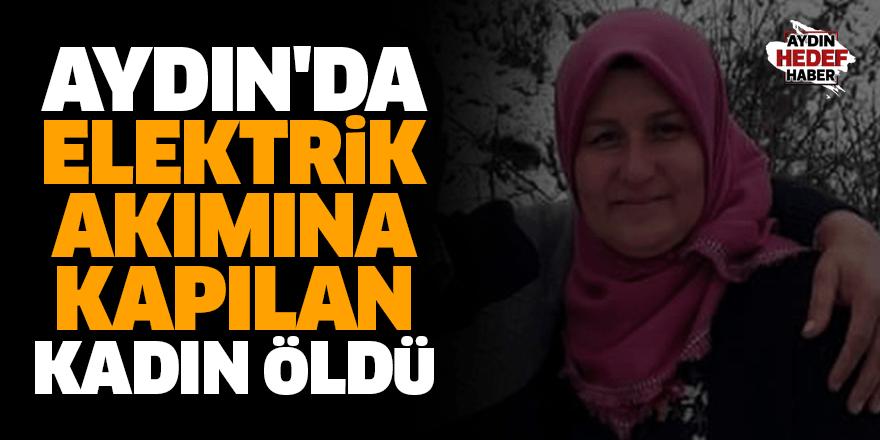 Aydın'da elektrik akımına kapılan kadın öldü