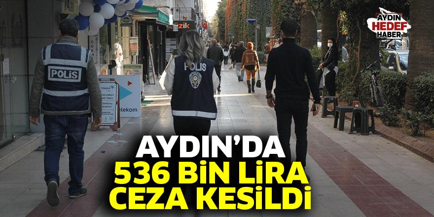 Aydın'da 536 bin lira ceza kesildi