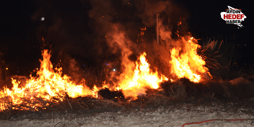 Koçarlı'da çıkan yangın korkuttu
