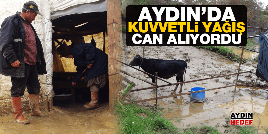 Aydın'da kuvvetli yağış can alıyordu