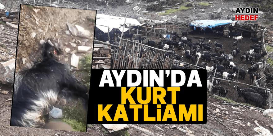 Aydın'da kurt katliamı