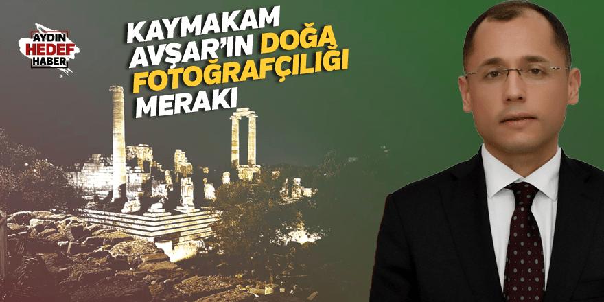 Kaymakam Avşar'ın doğa fotoğrafçılığı merakı