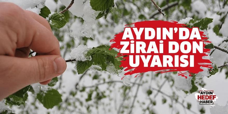 Aydın'da zirai don uyarısı