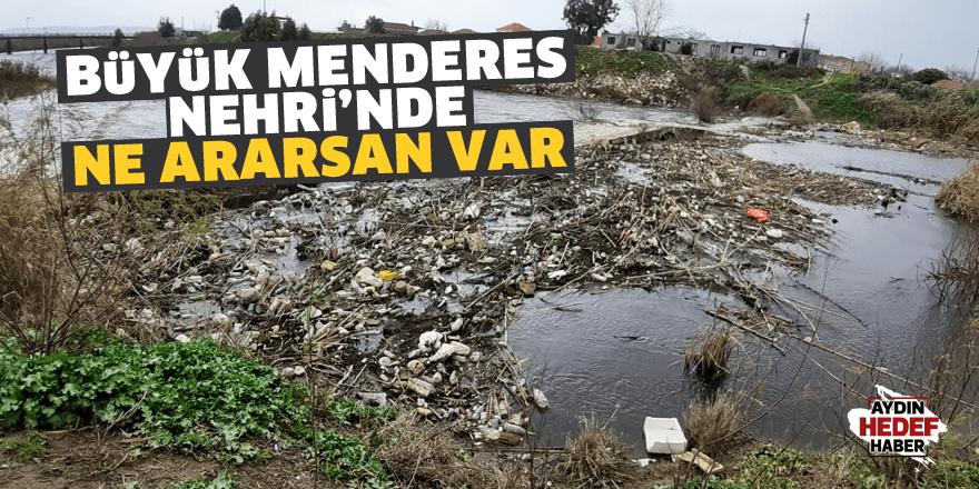 Büyük Menderes Nehri'nde ne ararsan var