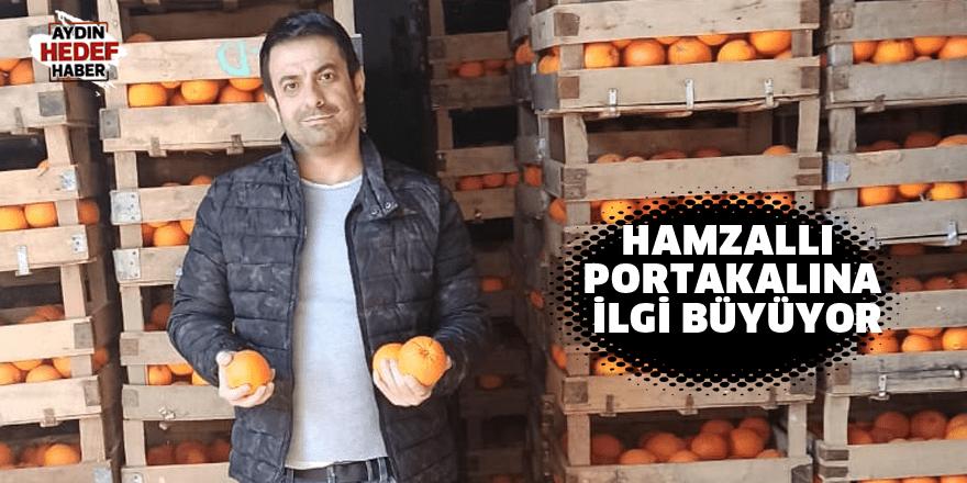 Hamzallı portakalına ilgi büyüyor